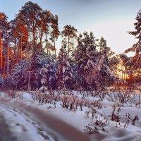Сказочные шаги Зимы! ... (рассвет) :: Елена (Elena Fly) Хайдукова