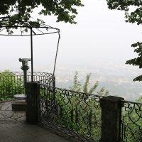 Туман над Брагой :: Ольга