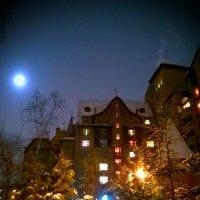 Ночной замок :: Marina Pelymskaya