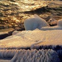 Зима на Боденском озере :: Elena Wymann