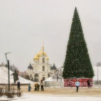 В Дмитрове установили ёлочку. :: Анатолий. Chesnavik.