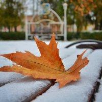 Встреча осени с зимой.... :: Александр Довгий