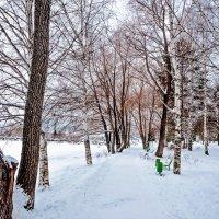 Зима,день второй... :: Aquarius - Сергей