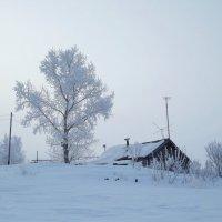 Деревенские зимние мотивы 1 :: Светлана Рябова-Шатунова