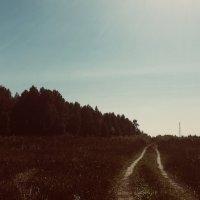 Просторы 2.0 :: Михаил Луговой