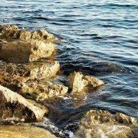 Тихо плещется вода :: Сергей Беличев