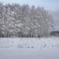В морозной тишине :: Константин