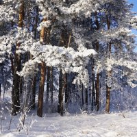 Зимнее :: Наталия Григорьева