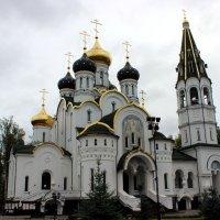 Храм Святого Благоверного князя Александра Невского :: Дмитрий Солоненко
