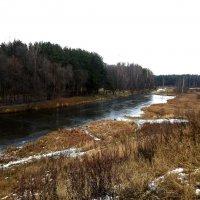 Декабрь без снега – очень грустные мотивы, затянут нудный межсезонья переход... :: Елена Павлова (Смолова)