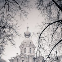 Winter is here :: Марина Лукина