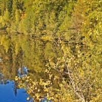 Осень на Валааме :: Nikolay Monahov