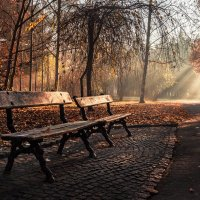 Две скамейки... :: Сергей