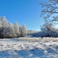 Белая музыка зимы :: Вячеслав Маслов