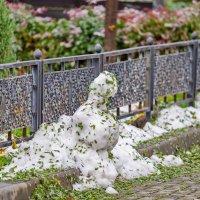 Был у нас снег :: Николай Саржанов