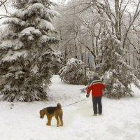Зимние картинки. фото-4. :: Nata