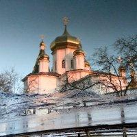 Отражение в воде. :: Ольга