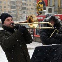 Зимняя мелодия :: Михаил Янкин