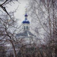 В зимнем закулисье... :: марк