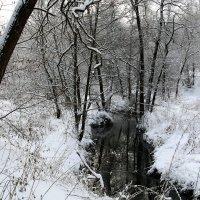 этюд :: Владимир Холодницкий