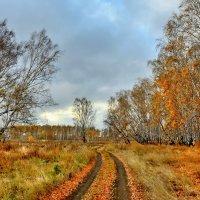Середина октября :: Mikhail Irtyshskiy