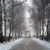 Зимнее утро накануне.. :: Венера Чуйкова