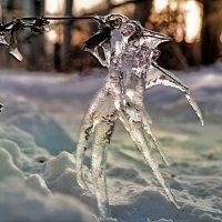 Ледовый арт начала декабря.. :: Андрей Заломленков