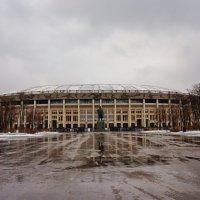 Лучший стадион в мире (по просмотру) :: Nataly St.