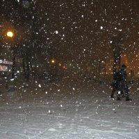 Снегопад... :: Наталья Герасимова