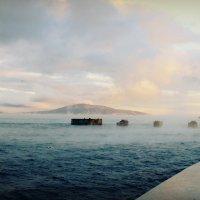 Море парит :: Ольга