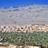 Оазис в пустыни :: Георгий А