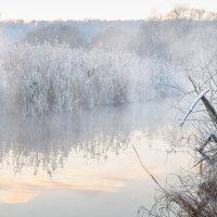 Морозный декабрь :: Александр Орлов