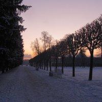 Зимний закат :: Наталья Герасимова
