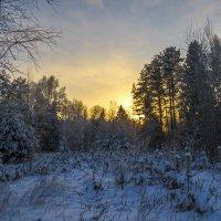 За лес скатилось солнце :: Сергей Цветков