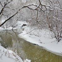 Начало зимы :: Светлана Prolubshikov@