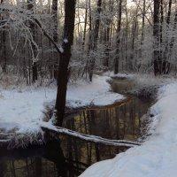 И какой же русский не любит зимы?! :: Андрей Лукьянов