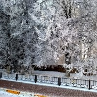 Зимнее утро в городе :: Елена Семигина