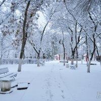 зима :: Мария Хворостова