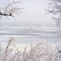 Зима красуется... :: Тамара Бедай
