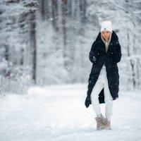 Зимний лес :: Алексей Силин