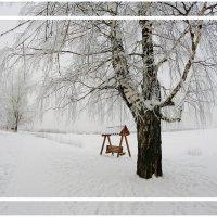 Грустная холодная зима... :: Александр Широнин