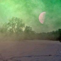 Зимняя ночь :: Александр Бойченко