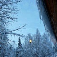 В резиденции Деда Мороза :: Ольга