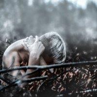 Рассвет :: Anton Lipatov