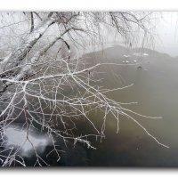 Замерзающий мир. :: Зоя Чария