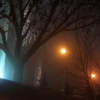 туманная ночь 2 :: Геннадий Свистов
