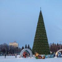 Ульяновск (Симбирск). Новогодняя елка (2016 год) :: Алексей Шаповалов Стерх