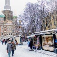 Зимний Петербург :: Людмила Волдыкова