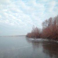 Бесснежный ноябрь :: натальябонд бондаренко