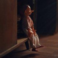 Моя новая фотоистория про Варю и Буратино :: Наталья Мячикова